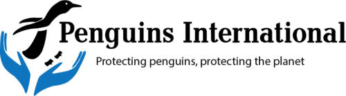 Penguins International
